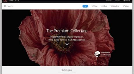 Adobe Stock News Premium Collection