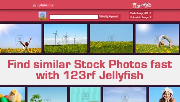 Find a similar stock photo fast with 123rf Jellyfish
