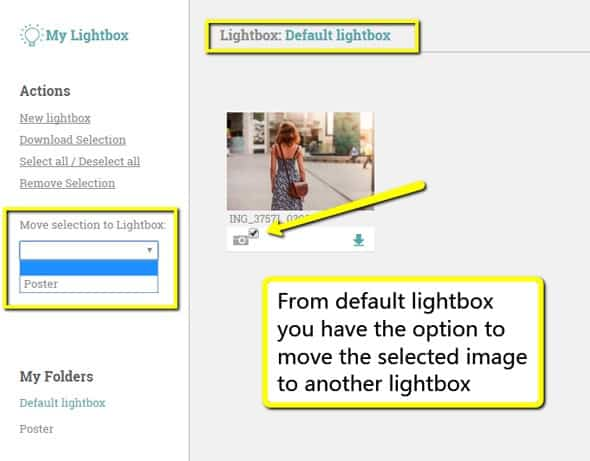 move-an-image-to-another-lightbox