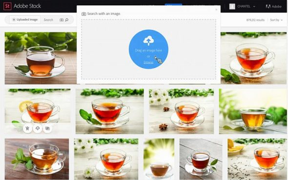 Adobe Stock Visual Search