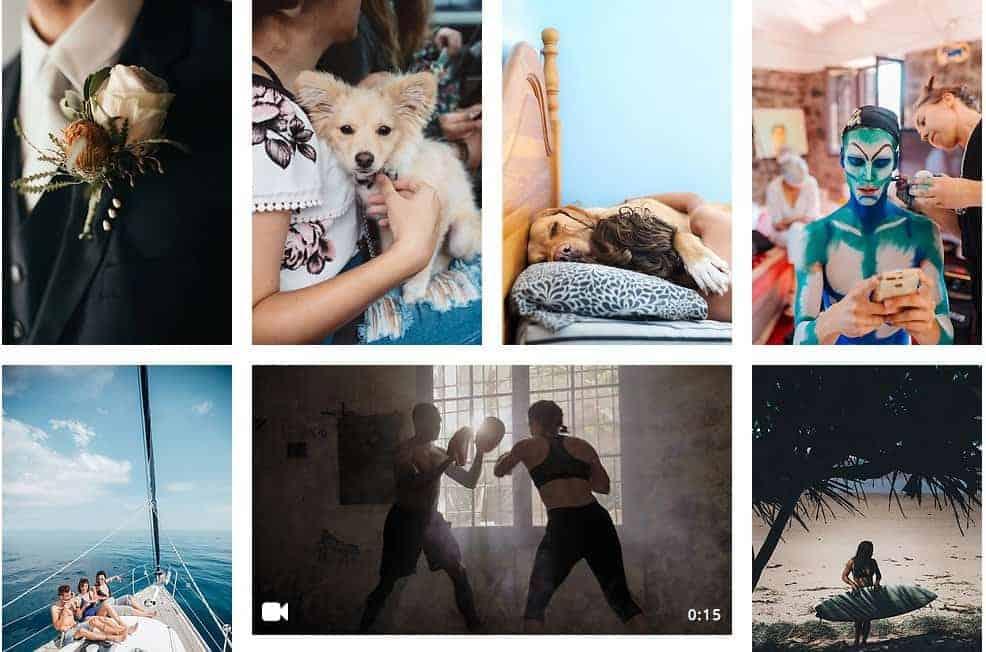 Top 3 Stocksy Alternatives to Buy Exclusive Artsy Images