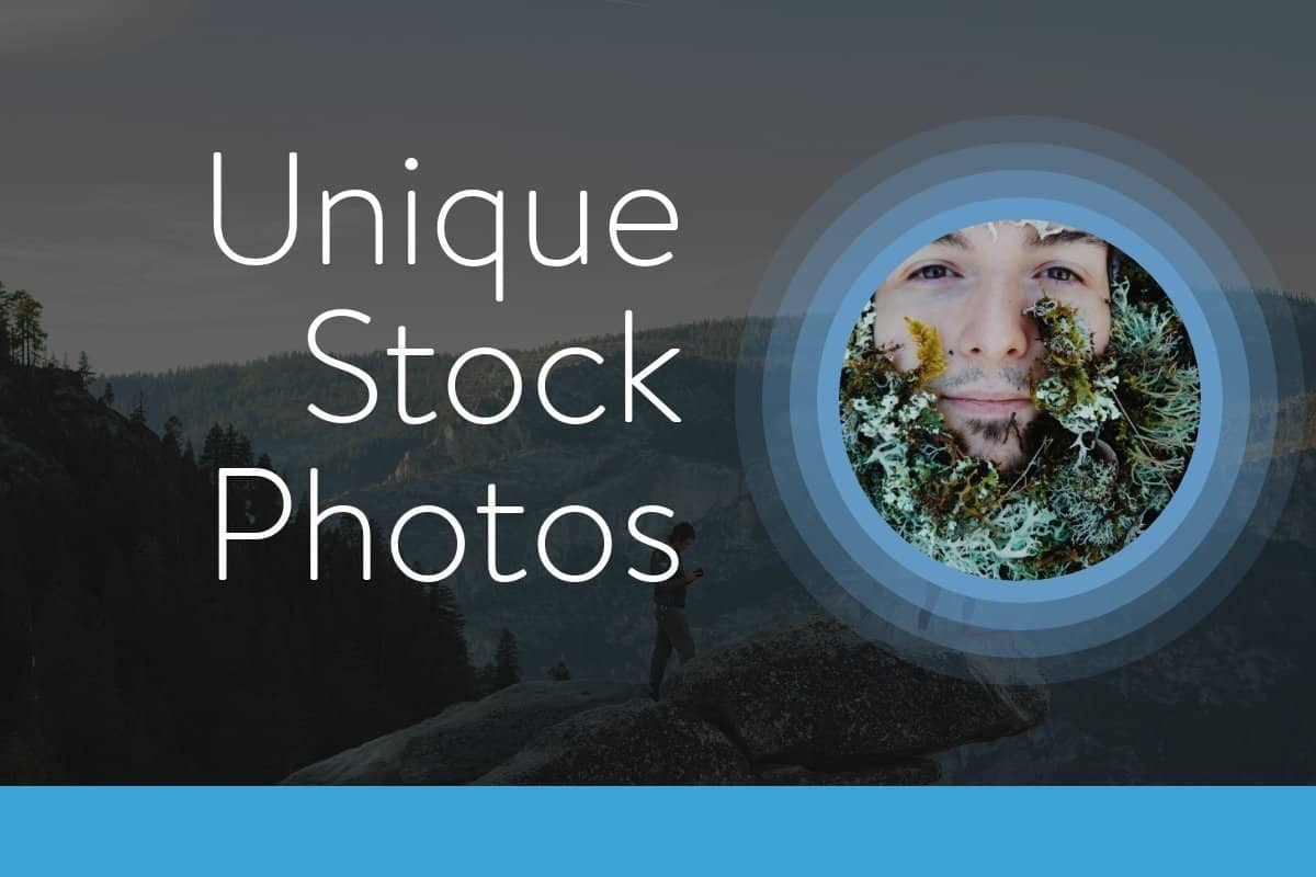 Enter the World of Unique Stock Photos – You'll Love It!