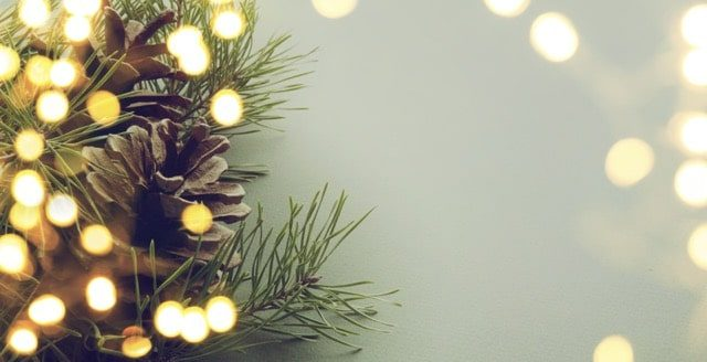 Adobe Stock Most Downloaded Christmas Tree Branch Lights