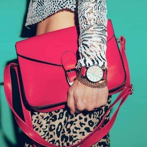 Animal Print and Red Accessories