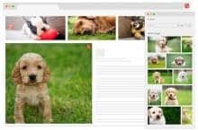Shutterstock Improves Search with New AI Plugin and Showcase Site